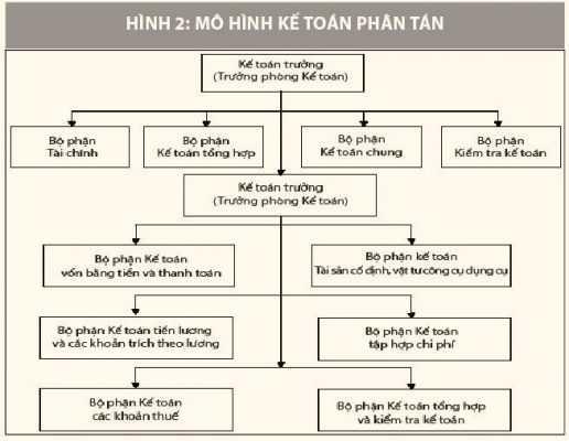 Mô hình tổ chức kế toán phân tán